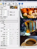 PhotoZoom Pro V8.0 电脑版